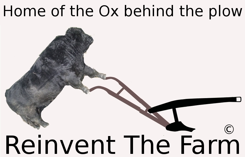 Reinvent The Farm Home of the Ox behind the plow